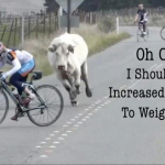 Comparing Power To Weight Ratio